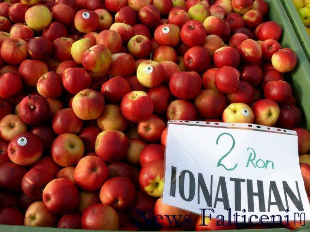 Falticeni-comert cu fructe 7