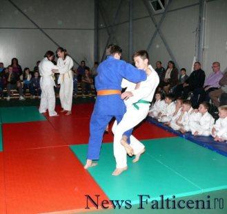 Falticeni-demonstratii judo 4