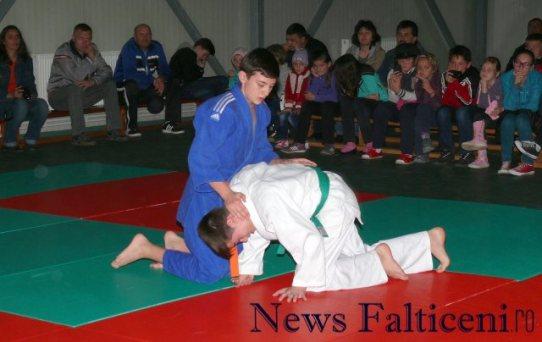 Falticeni-demonstratii judo 5