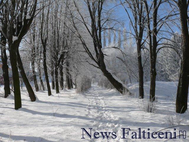 Falticeni-P1770174
