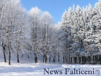 Falticeni-P1770207