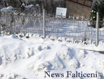 Falticeni-P1770270
