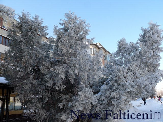 Falticeni-P1770331