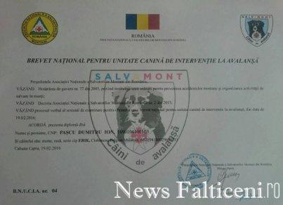 Falticeni -Brevet Pascu