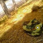 Αυτοκτονίες και ελληνικός στρατός