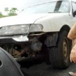Σκύλοι του έφαγαν το αυτοκίνητο