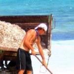 Έκλεψαν την ίδια την παραλία