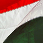 F1: Hungary: Πρώτη νίκη για την McLaren