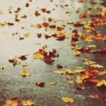 Ο χορός της βροχής