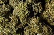 Βρήκε κρυμμένα 6 κιλά μαριχουάνας στο αυτοκίνητο που οδηγούσε 15 χρόνια!
