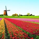 5 πράγματα που ίσως δεν γνωρίζατε για την Ολλανδία