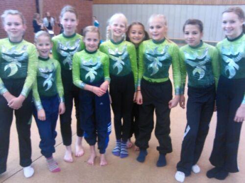 Bild zu TuS Bergen wieder erfolgreich bei Kreismeisterschaften Gerätefinale (22.10.2012 )