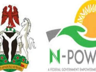 npower programme 2019