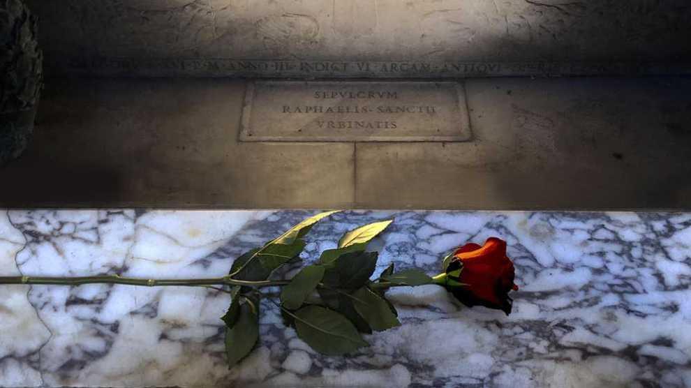 NEWS – Un rosa per Raffaello