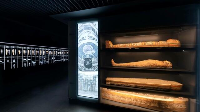 """NEWS / Museo Egizio / Apre il nuovo spazio permanente """"Alla ricerca della Vita"""""""