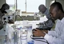 Scientists In Ghana