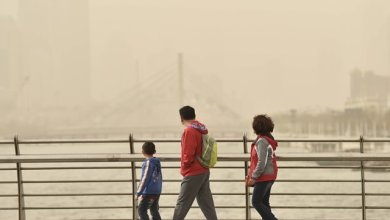 People look at the buildings in dust in Tianjin, north China, March 28, 2015. Part of Tianjin received dusty weather on Saturday. (Xinhua/Yue Yuewei) (zwx)