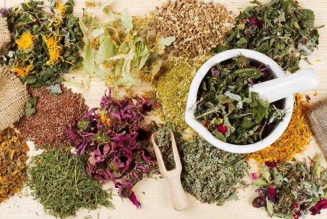 healing herbs on wooden table, herbal medicine