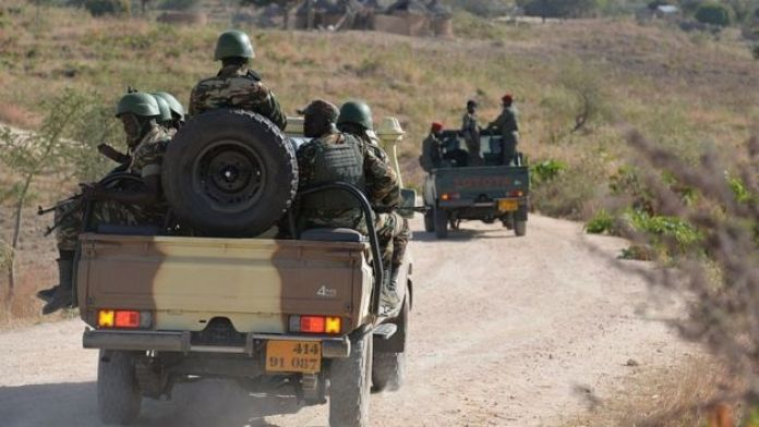 Cameroon's army forces patrol near the village of Mabass, northern Cameroon
