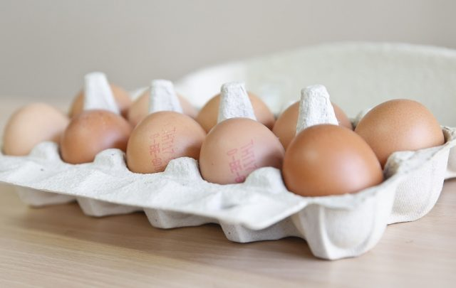 Two arrested in connection with European egg contamination scandal
