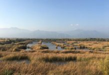 Yeya Lake Wetland Reserve in Yanqing district, Beijing. (Photo by Wang Hailin from People's Daily)