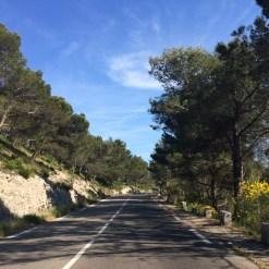Driving into Les Alpilles
