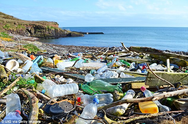 It is estimated that about eight million metric tons of plastic find their way into the world's oceans every year