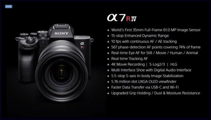 Sony a7R IV: First Impressions and Real-World Photos