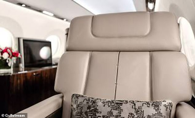The G600 private jet is the latest offering from the Gulfstream Aerospace Corporation, a popular brand among the world's oil tycoons and other members of the super-wealthy