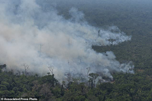 Fire consumes an area near Porto Velho, Brazil, Friday, Aug. 23, 2019. Brazilian state experts have reported a record of nearly 77,000 wildfires across the country so far this year, up 85% over the same period in 2018