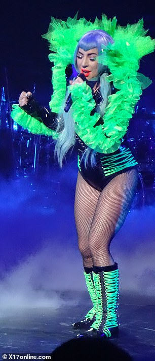 Professional: Gaga put on quite the show, with multiple costume changes