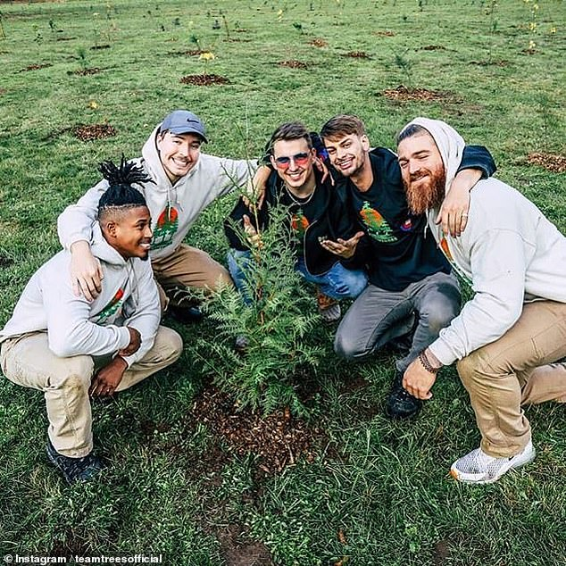 The #TeamTrees campaign — which is being undertaken with the Arbor Day Foundation — has already raised $7,937,626 (around £6,161,000) for the cause. Pictured,Jimmy 'MrBeast' Donaldson (second left) and friends planting trees