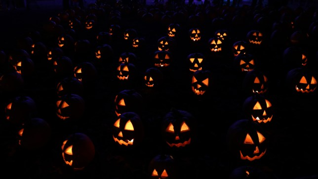 Illuminated pumpkins
