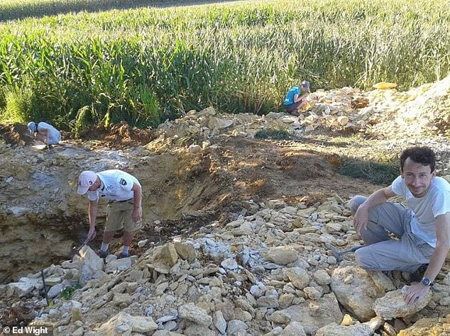 The Jurassic-era bones belonging to a terrifying creature called pliosaurs, were discovered by palaeontologists in a field of corn in the village of Krzyzanowice, close to the Swietokrzyskie Mountains