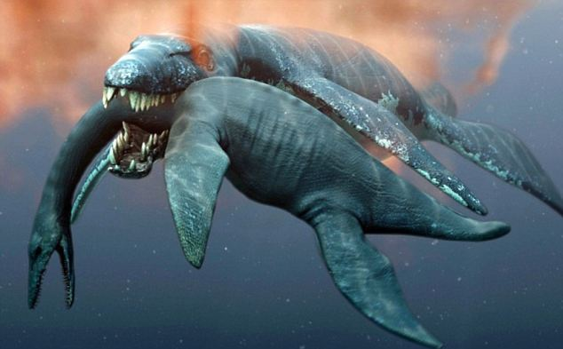 Fearsome: An artist's impression of Predator X, who has now been fully studied and named Pliosaurus funkei by the team who first discovered its remains in the Arctic island of Svalbard