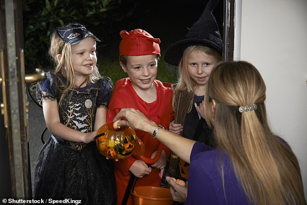 Doctors recommend that homes be well lit so children don't trip over their costumes and pets be leashed so they don't jump or bite trick-or-treaters (file image)