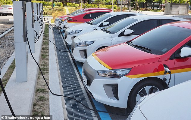 The IEA remains optimistic about the future of electric vehicles, anticipating that by 2040 there will be more than 330million around the world