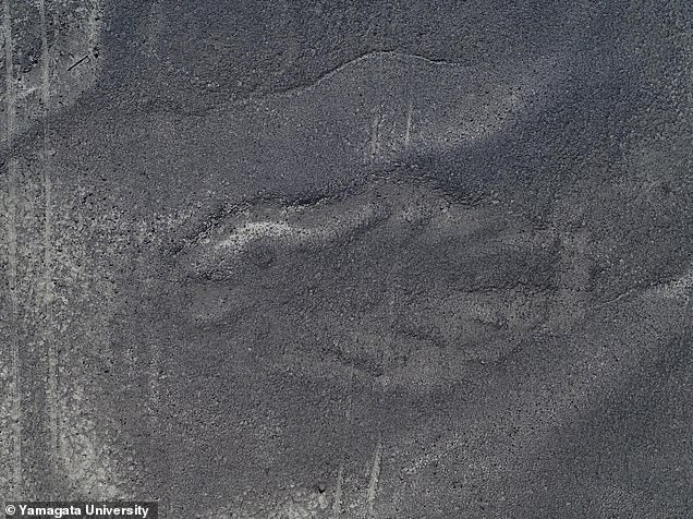 Researchers had to study thousands of images to try and find patterns hidden in the sand