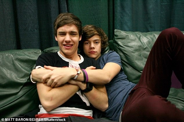 Who is he? Speaking during an interview with The Face magazine, Liam admitted that there is now a 'mystery' surrounding Harry and his transformation into a solo artist (pictured in 2012)