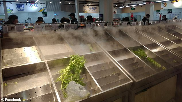 Green vegetables were sold out almost immediately, but John said frozen foods were plentiful