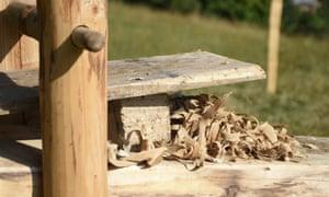 Chestnut wood shavings