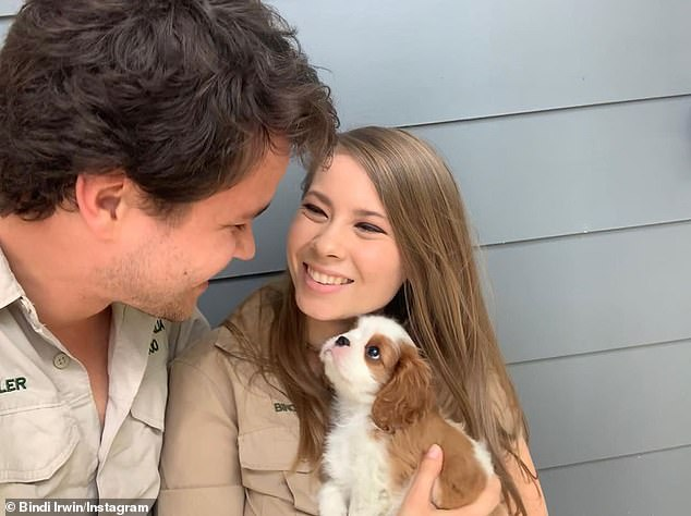 Family time: Meanwhile, Bindi (R) and Chandler (L), 23, announced that their family was 'growing', as they showed Piggy off to the world for the first time