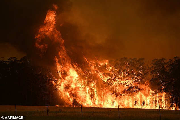 Crisis: Bushfires have absolutely devastated Australia this summer, with the death toll rising to 33 people. Pictured: Fire impacting a property in Bilpin, NSW on December 21