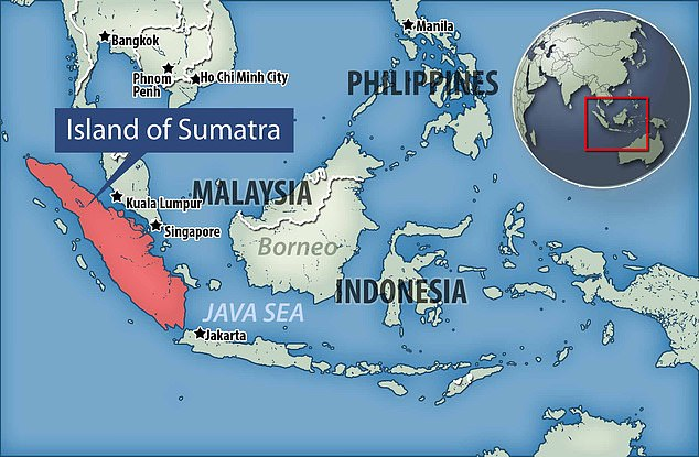 The eruption, which occurred 74,000 years ago on the island of Sumatra, Indonesia, was about 5,000 times larger than the Mount St Helens eruption in the 1980s