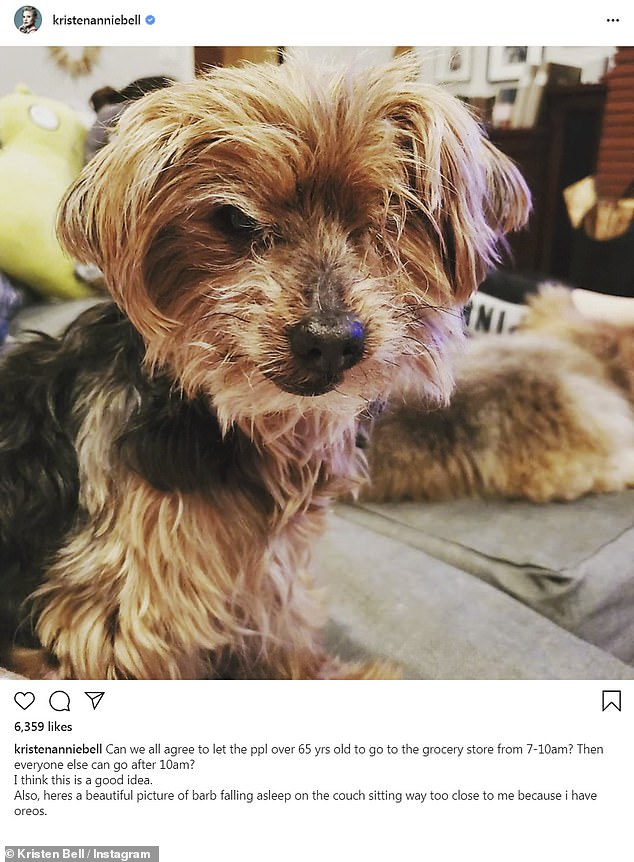 An idea and a dog: Kristen Bell posed a solution for the pandemic panic plaguing grocery stores in a post that featured her darling dog Barb