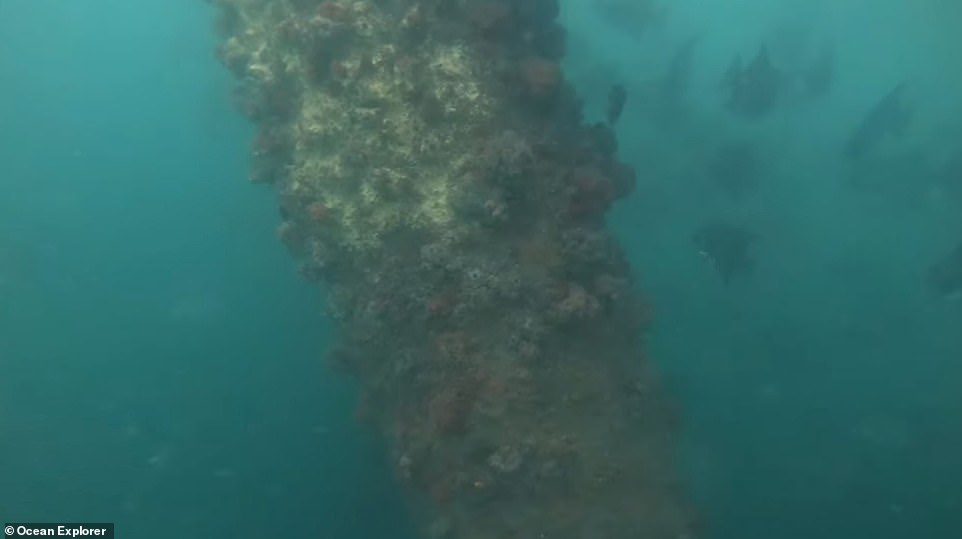 NOAA released new footage of the underwater area earlier this week and the team expects to publish its first results from the trip within the next few months