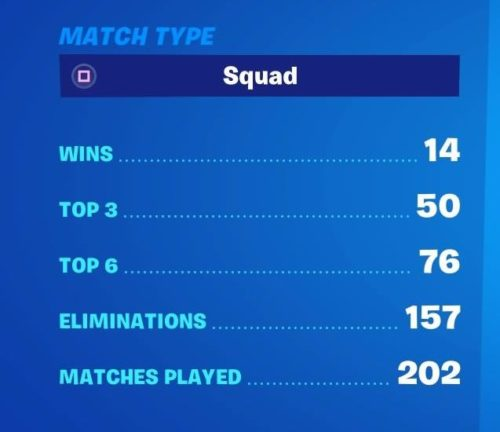 Fortnite Squad Stats