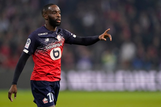 Chelsea transfer target Jonathan Ikone looks on during Lille's clash with Marseille