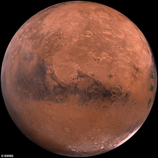 A layer of the fungus around 21 centimetres thick could 'largely negate the annual dose-equivalent of the radiation environment on the surface of Mars', researchers found