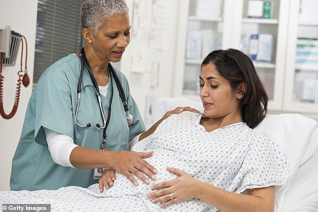 A new study found that 6.2% of pregnant women in Philadelphia had developed coronavirus antibodies, compared to 1.4% of the city's general population (file image)